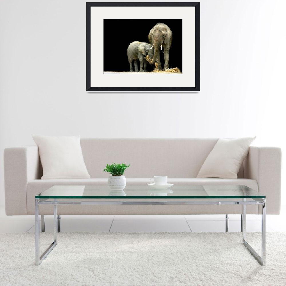 """""""African Elephants with baby....""""Feeding Time""""&quot  (2009) by StephieButler"""
