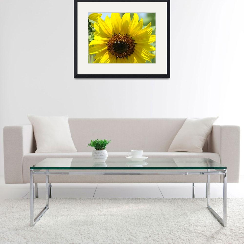 """""""Christmas Gift Gallery Sun Flower Art Gifts&quot  (2009) by BasleeTroutman"""
