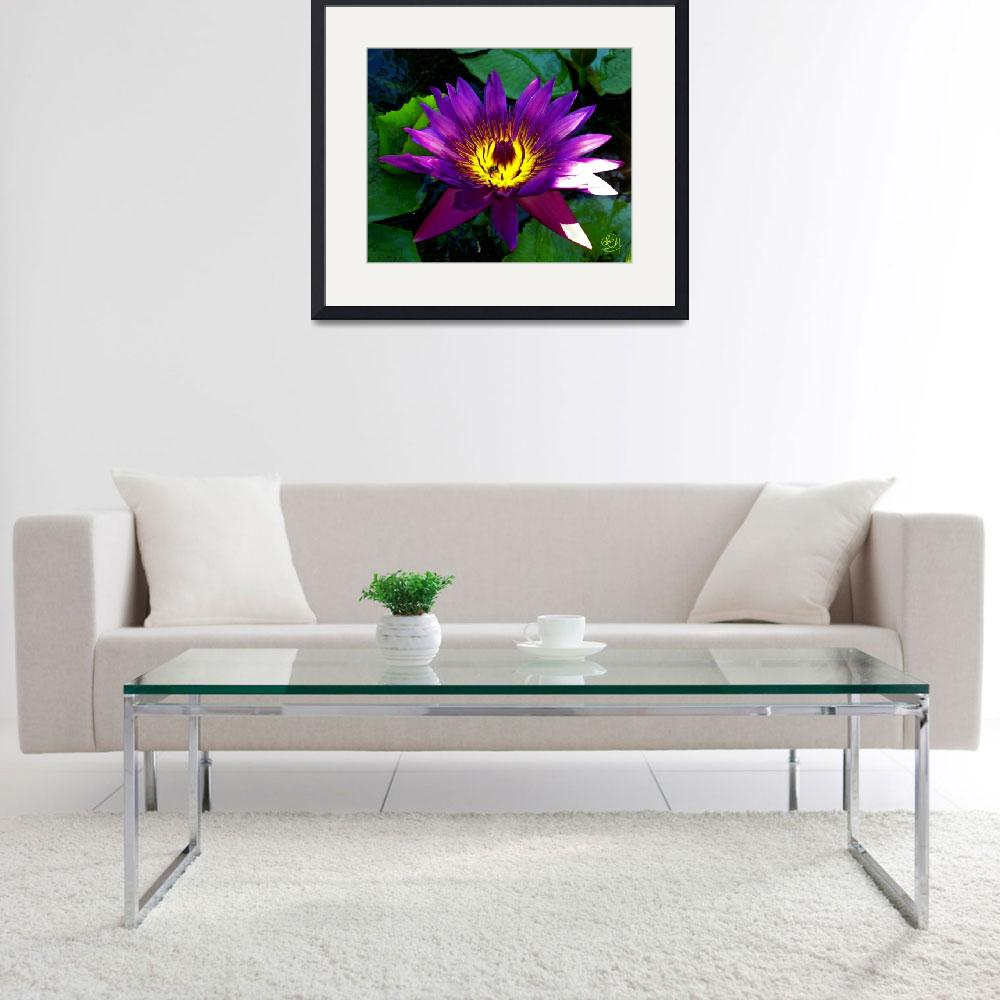 """""""Purple Lotus Surreal crop&quot  by ChrisCrowley"""