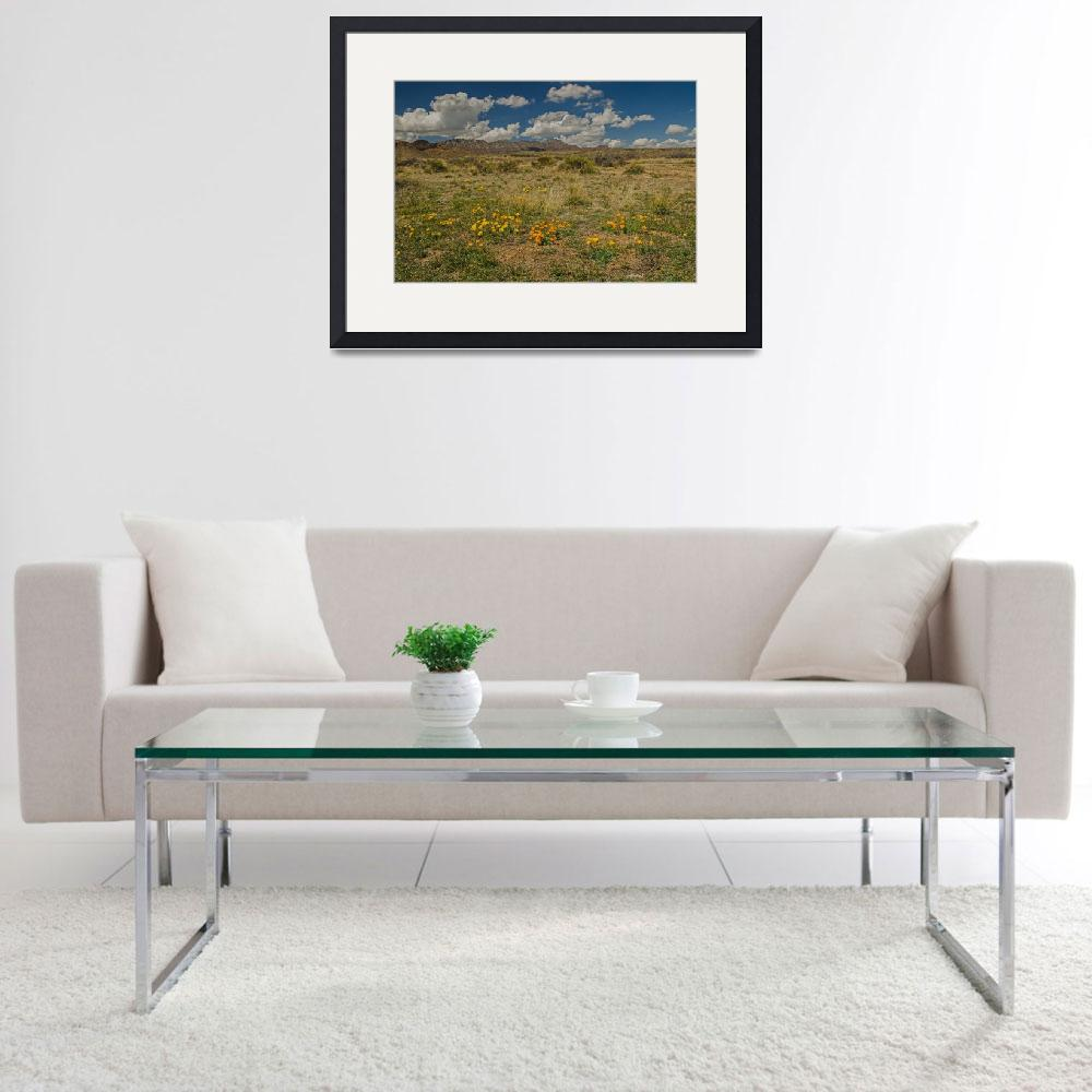 """Franklin Mountains from East&quot  (2015) by awsheffield"