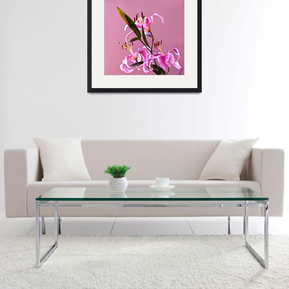 """""""Stargazer Lilies square frame&quot  (2013) by LightHeart"""