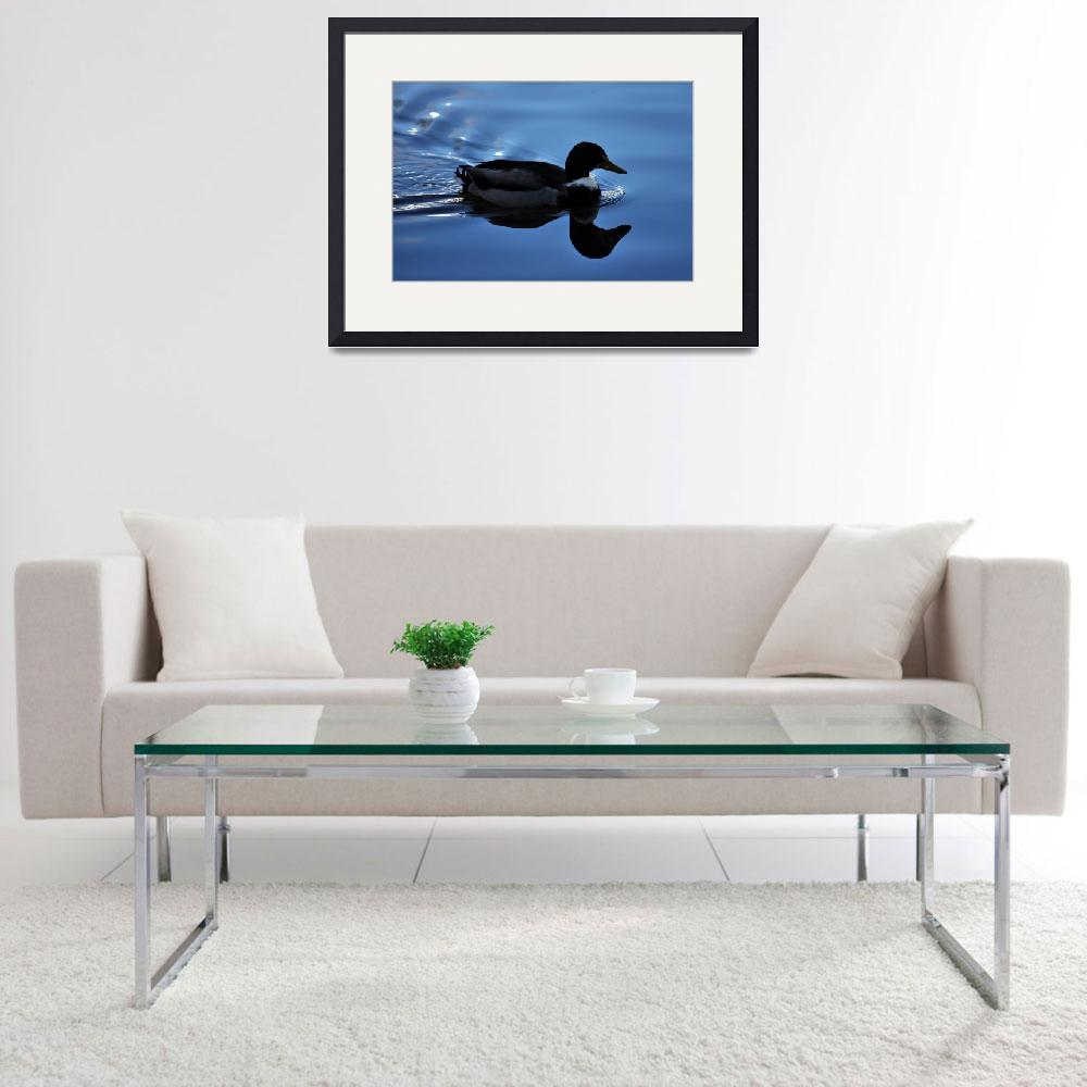 """""""Silhouette of Duck on Water&quot  (2016) by StevenRichards"""