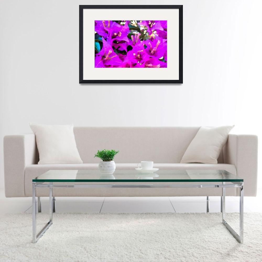 """Bougainvillea flowers in Italy two&quot  (2015) by flowersinabstract"