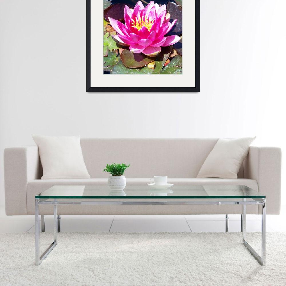 """""""PINK WATER LILY 2&quot  (2009) by DavidCreates"""
