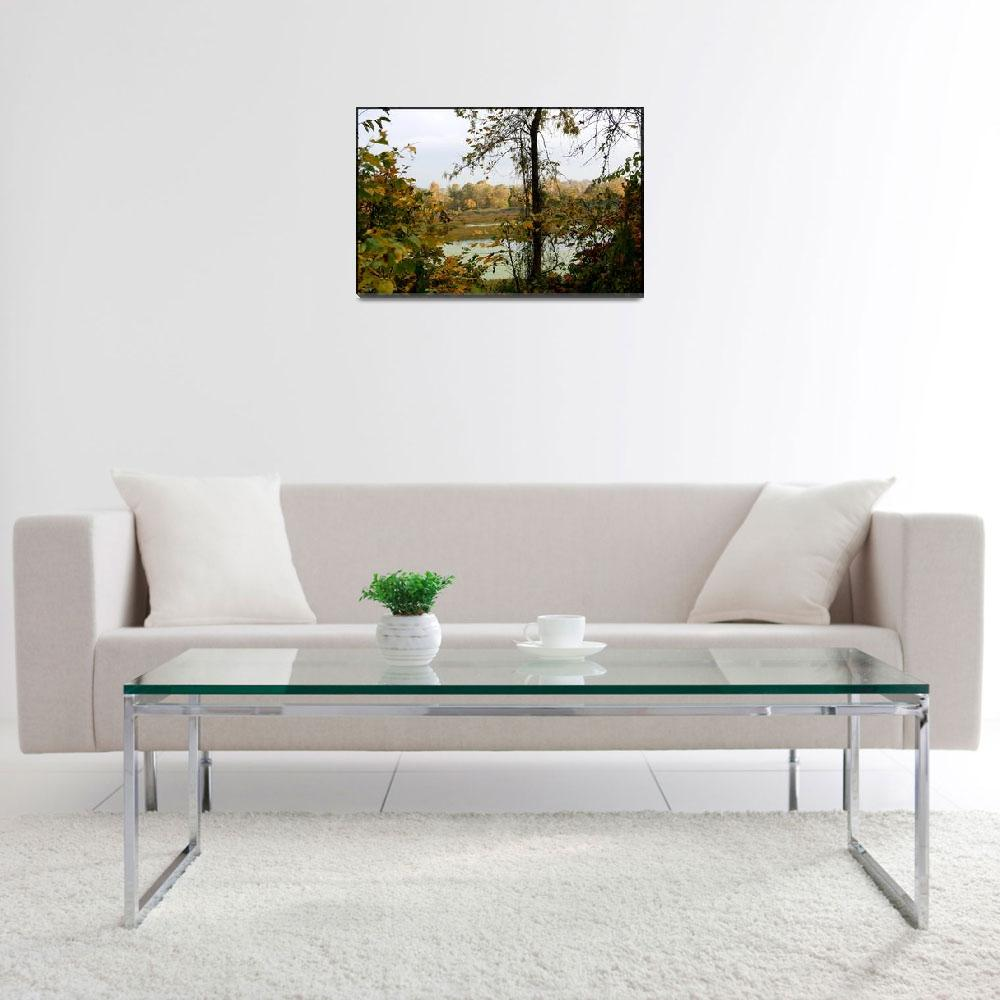 """Swamp Landscape in the fall""  by sherryswest"