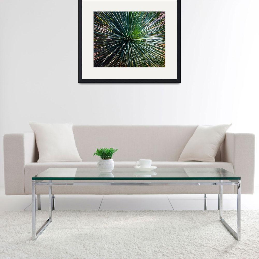 """Abstract Nature Desert Cactus Photo 207 Blue Green&quot  (2017) by Ricardos"