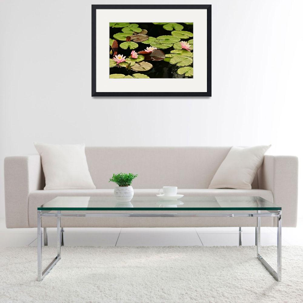 """""""The loveliness of Waterlilies&quot  (2014) by LightHeart"""