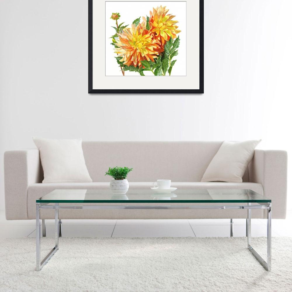 """""""Gold and Orange Dahlias with white background""""  (2016) by Pacific-NW-Watercolors"""