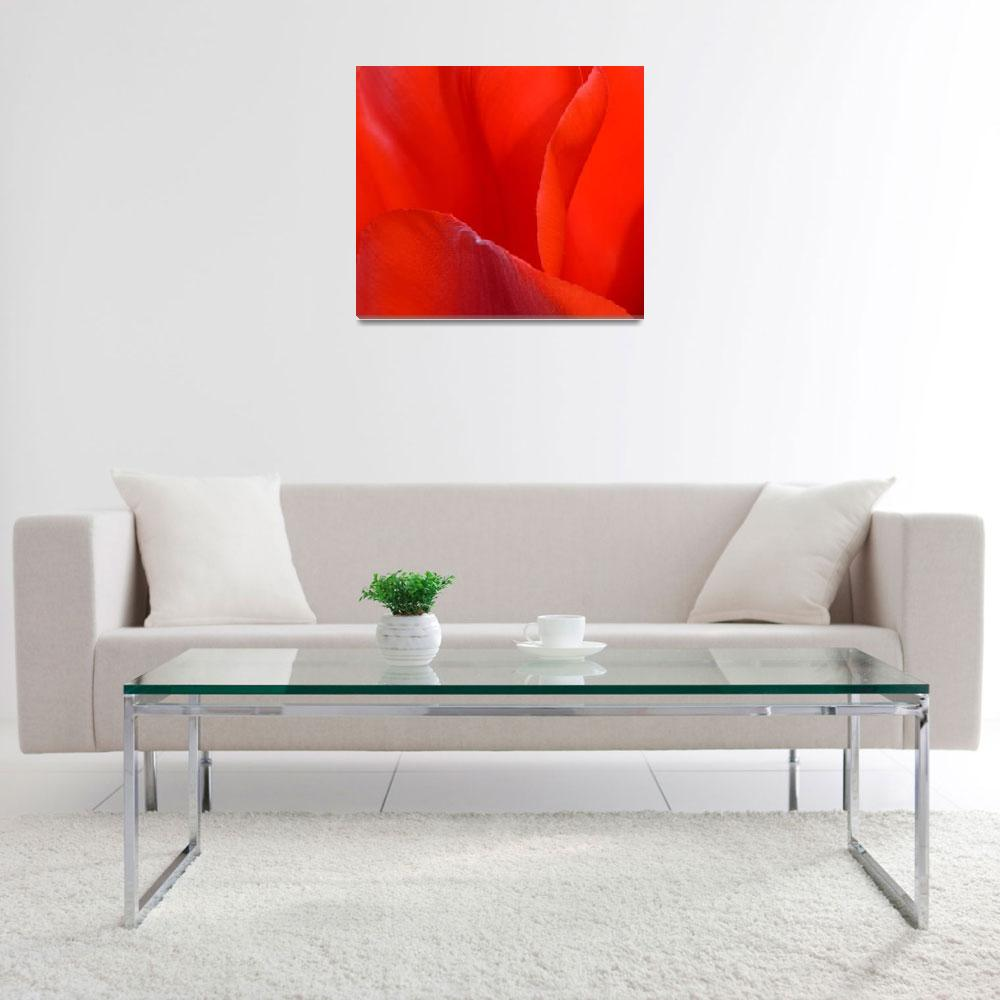 """""""""""Red Tulip 2"""" #2042315.0676 (2)&quot  (2015) by achimkrasenbrinkart"""