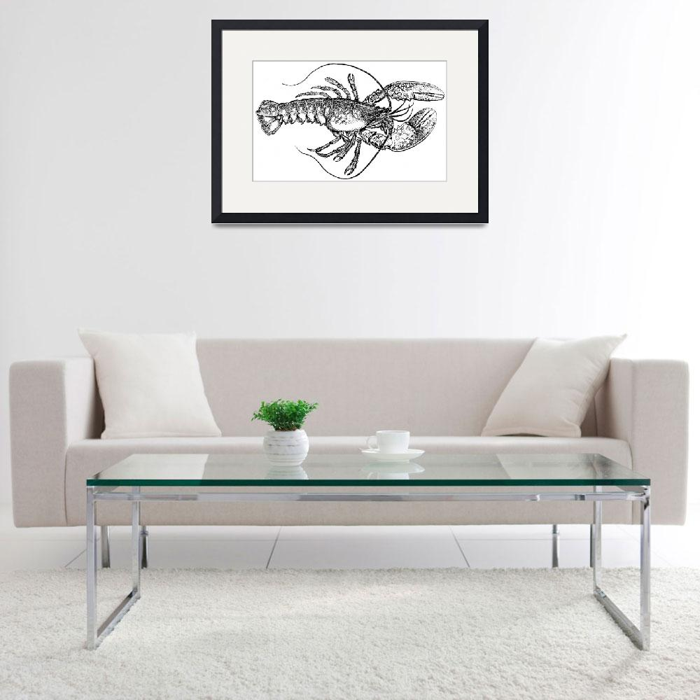 """""""Vintage Lobster Drawing""""  by Alleycatshirts"""
