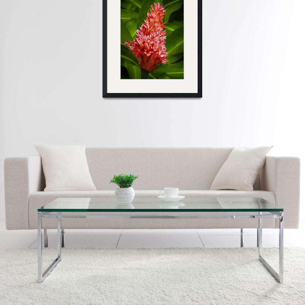"""""""Red Ginger with Butterfly&quot  by jvittek"""