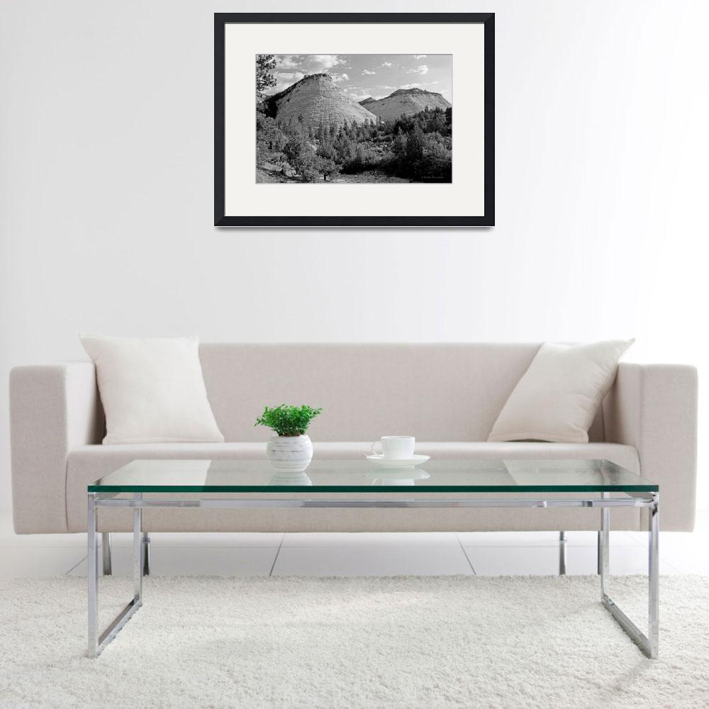 """""""Zion B&W&quot  by HodlinGallery"""