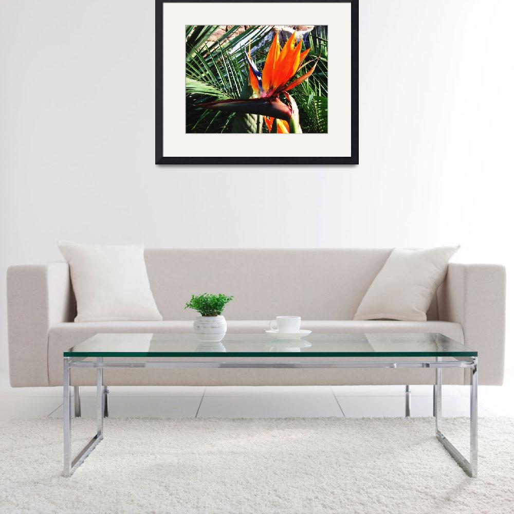 """Bird Of Paradise Flower Oil Painting""  (2009) by justbyjulies"