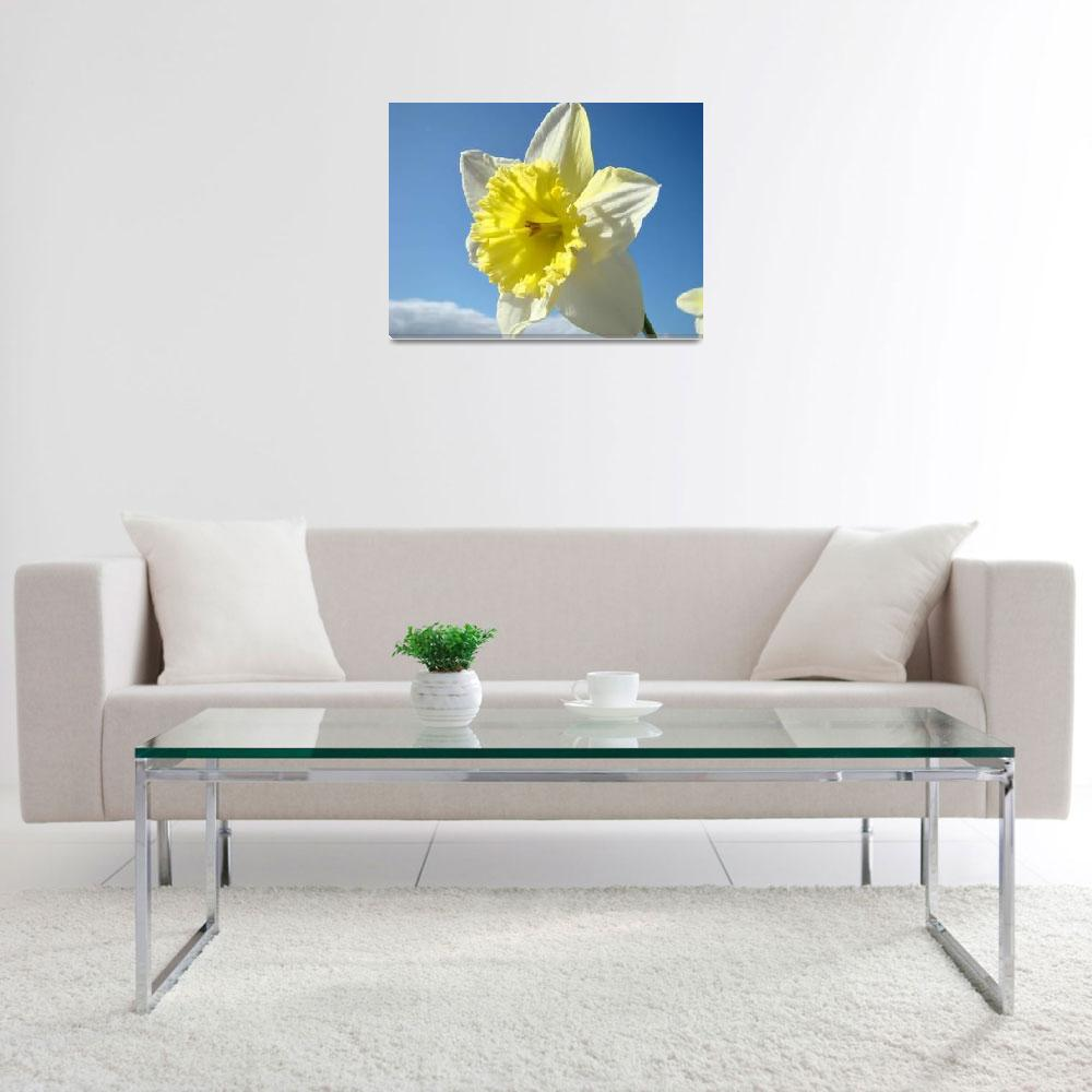 """""""Daffodils Flowers Spring Blue Sky Art Prints""""  (2009) by BasleeTroutman"""