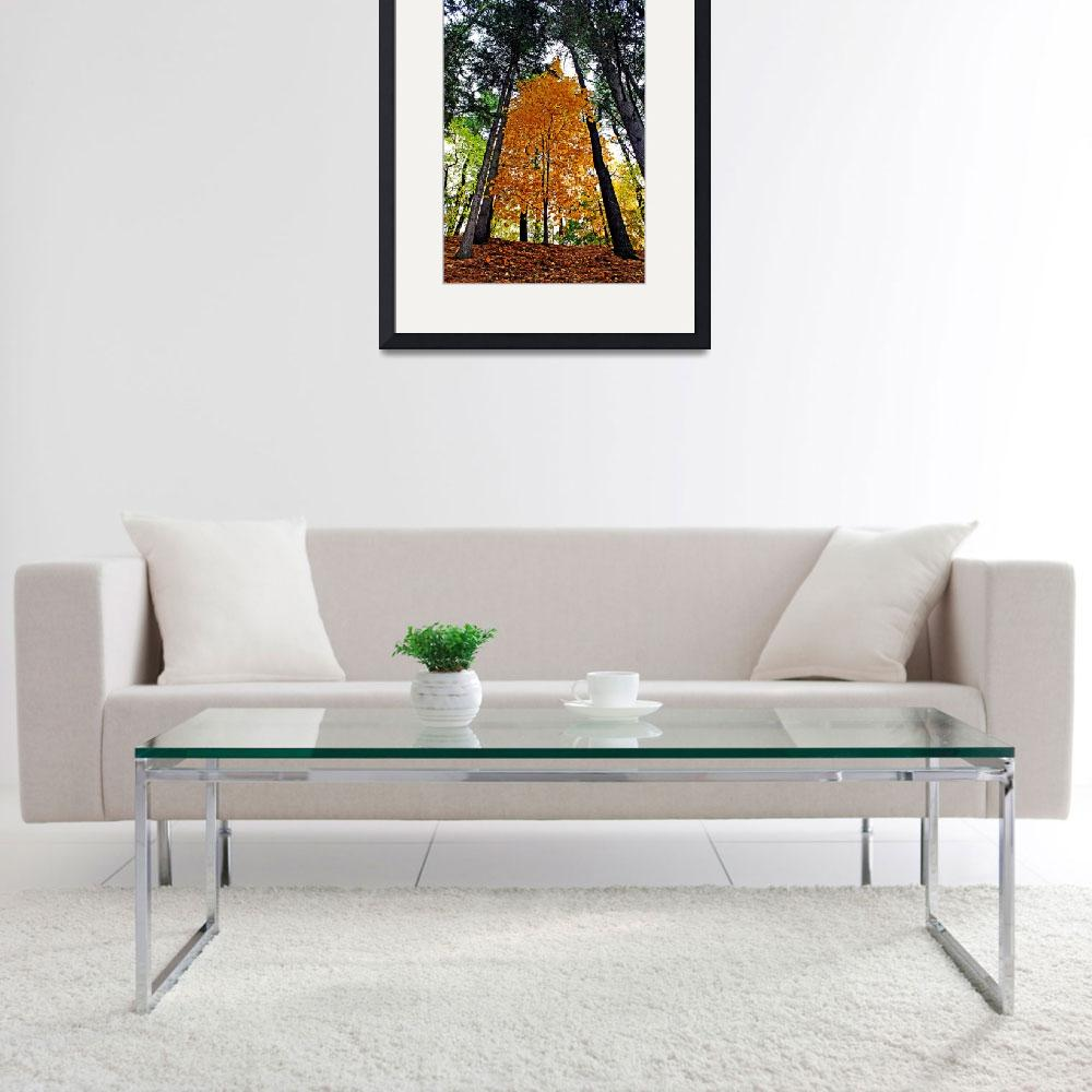 """""""One yellow tree with the pines&quot  by hess"""