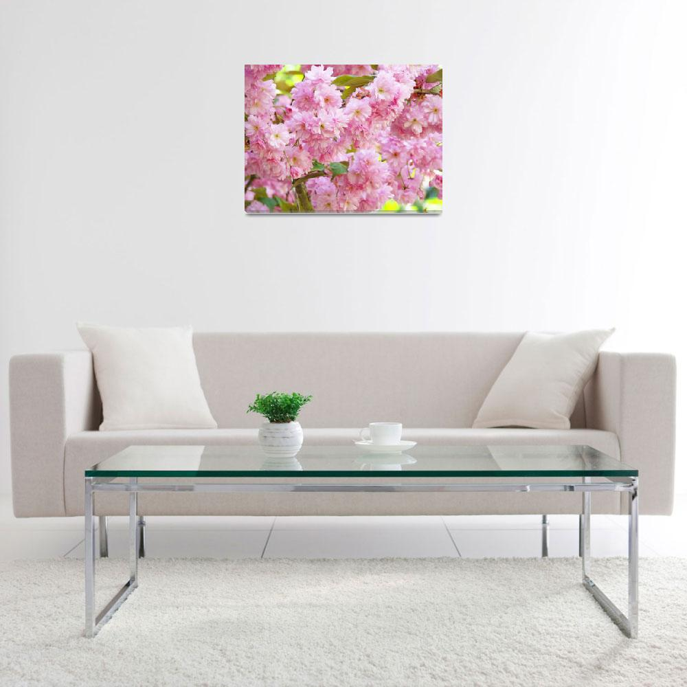 """Spring Tree Blossoms Flowers art prints""  (2011) by BasleeTroutman"