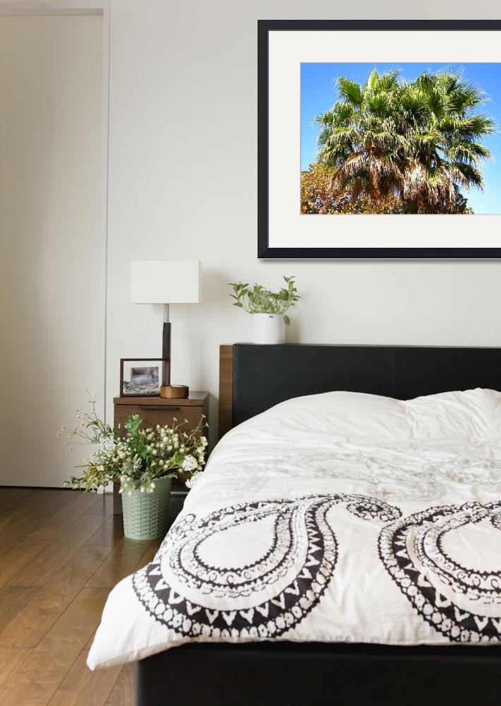 """""""Silicon Valley Palm Tree Tops&quot  by Artsart"""