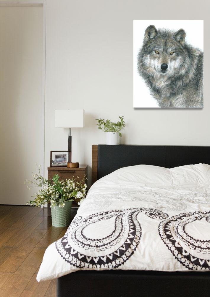 """Wolf ""HAUNTING EYES""""  (2007) by CarlaKurtArt"