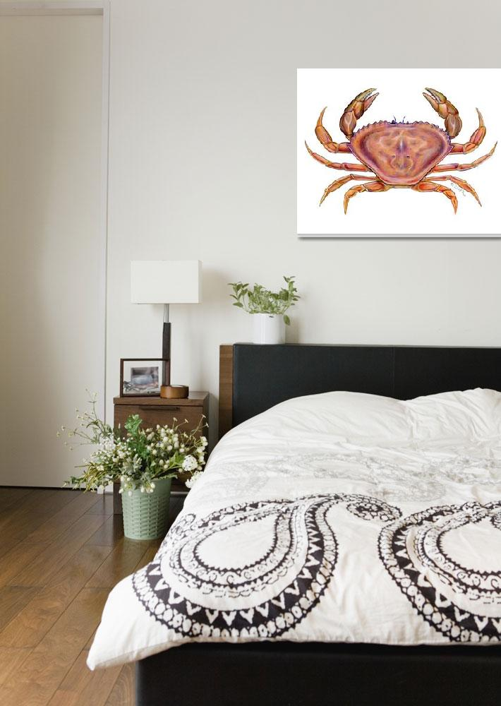"""""""Dungeness Crab (Cancer magister)&quot  (2006) by edenart"""