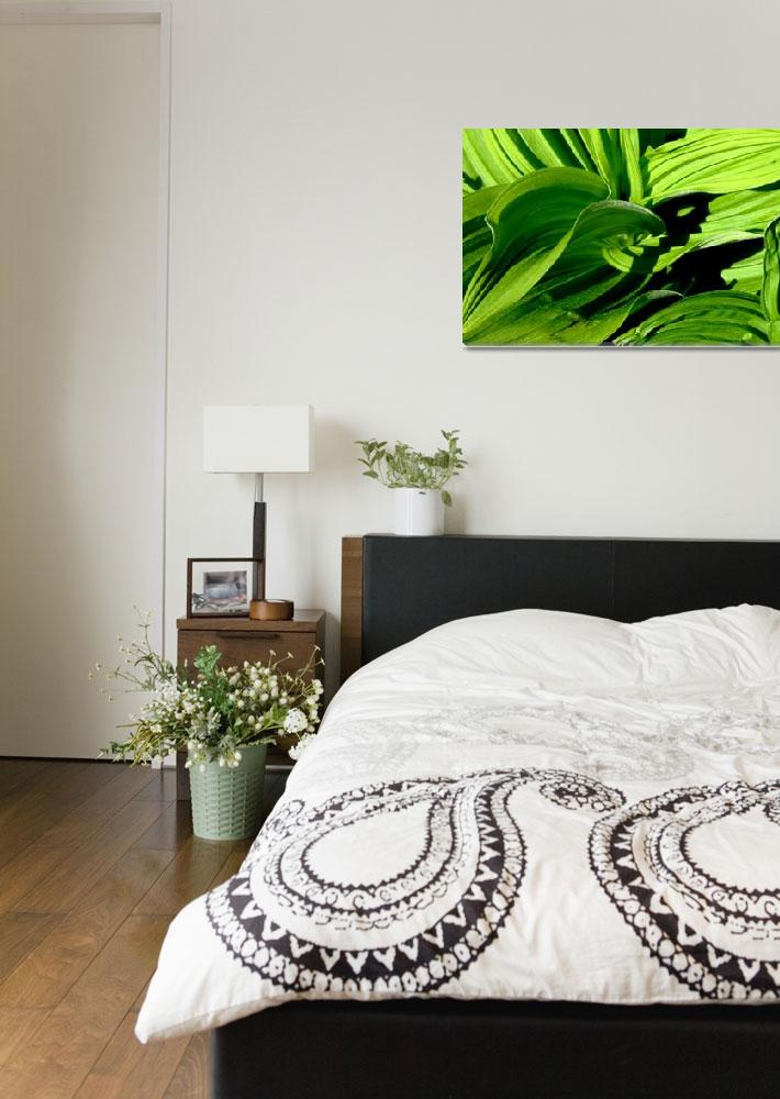 """Patterns of Green&quot  by swordandsigil"