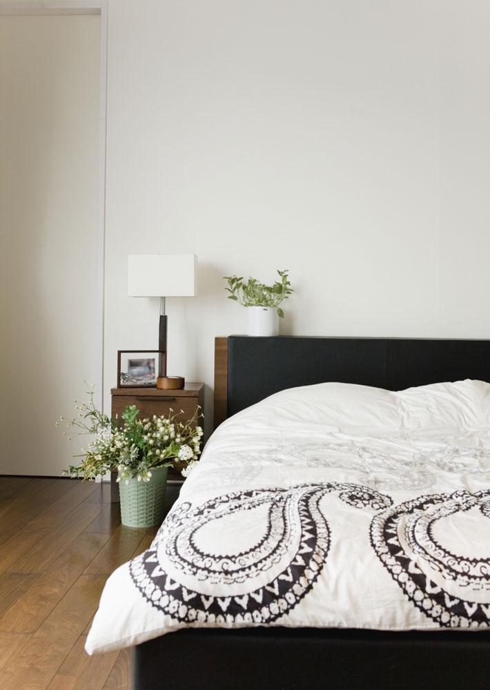 """Afrovenator abakensis, a prehistoric era dinosaur""  by stocktrekimages"