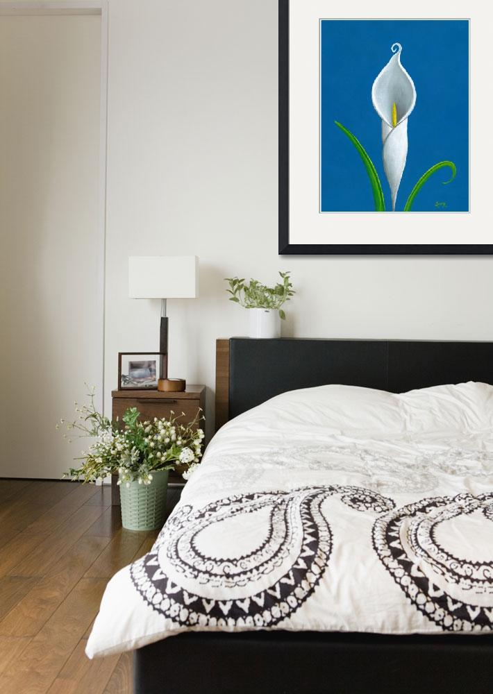 """""""White Cally Lilly on Blue""""  (2010) by SonnyBergum"""