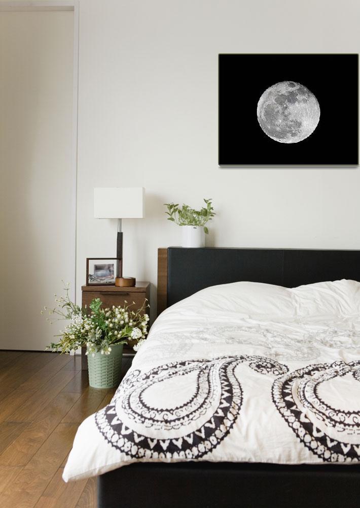 """Shoot the Moon&quot  (2009) by GlendaBorchelt"