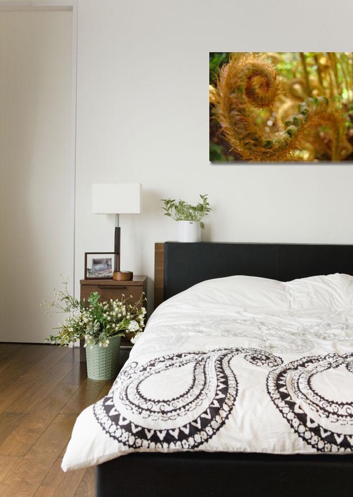 """Fern Fronds art prints Forest Ferns Nature Baslee&quot  (2010) by BasleeTroutman"
