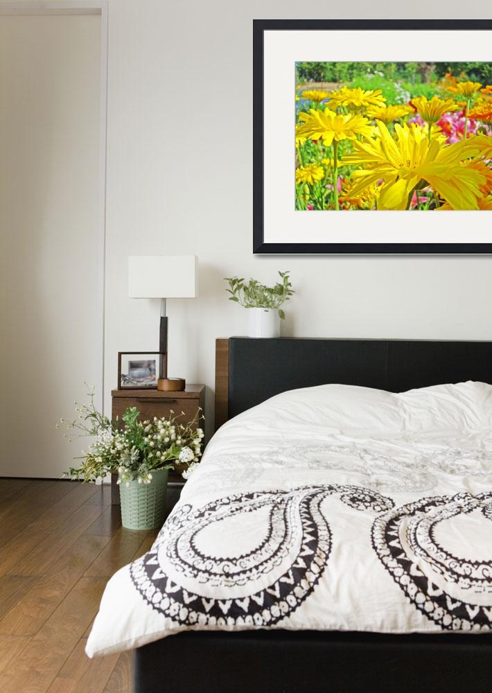 """""""Daisies Field art prints Yellow Daisy Flowers&quot  (2010) by BasleeTroutman"""