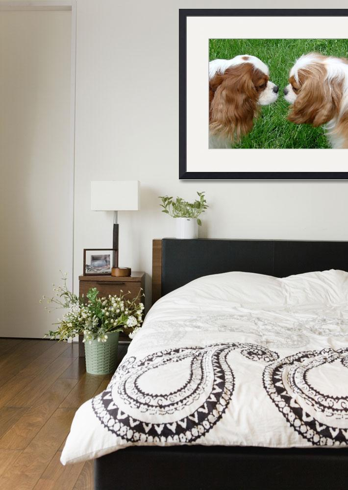 """""""Cavalier King Charles Spaniel&quot  by lindacarroll"""
