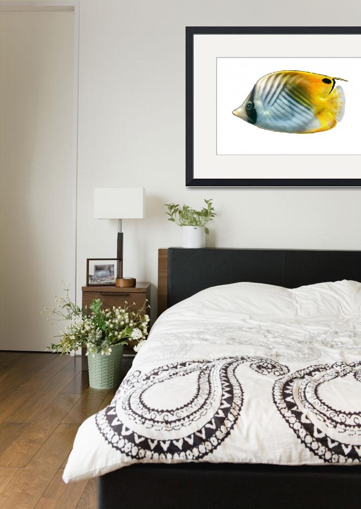 """""""Illustration of a threadfin butterflyfish&quot  by stocktrekimages"""
