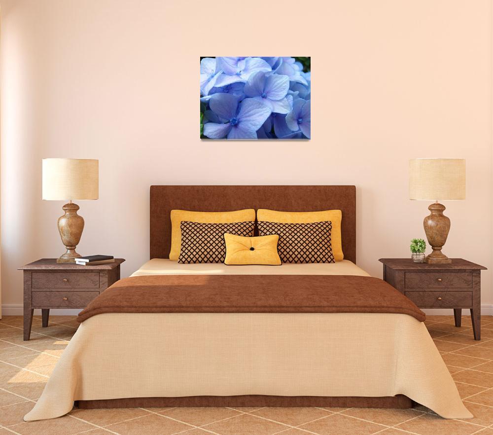 """Blue Hydrangea Flower art prints Nature Colorful&quot  (2010) by BasleeTroutman"