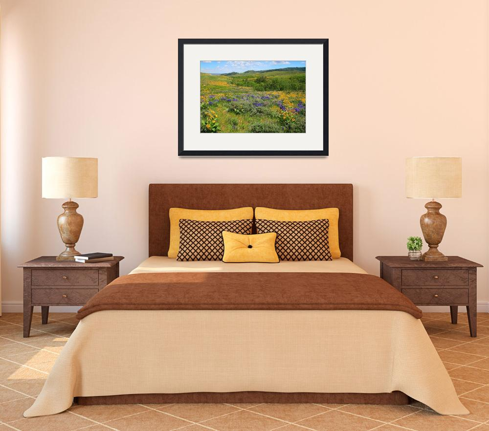"""""""Mountain Meadow Spring&quot  (2008) by colonial1637"""