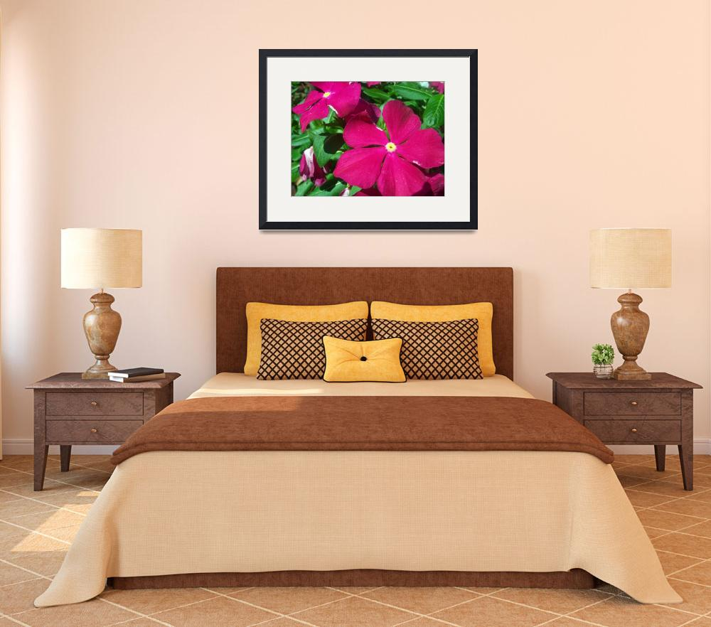 """""""Red Impatiens&quot  (2011) by Shaun33551"""