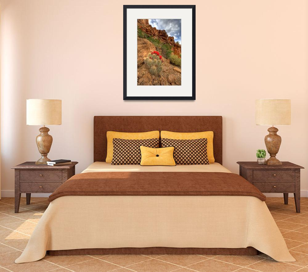 """""""Nine Mile Canyon Cacti""""  (2010) by ajs"""