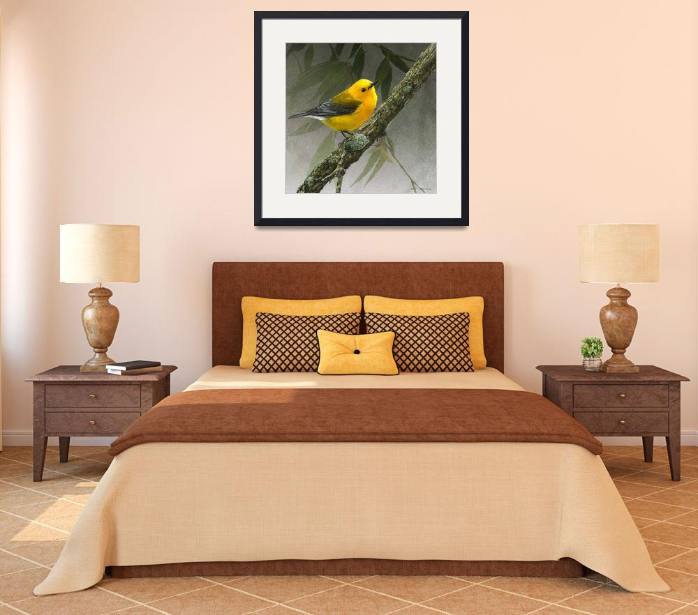"""golden gem, prothonotary warbler&quot  (2014) by rchristophervest"
