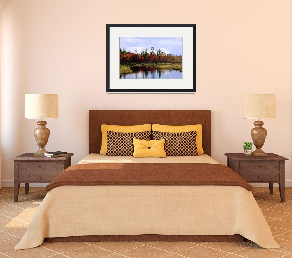 """""""Adirondack Fall&quot  by HodlinGallery"""