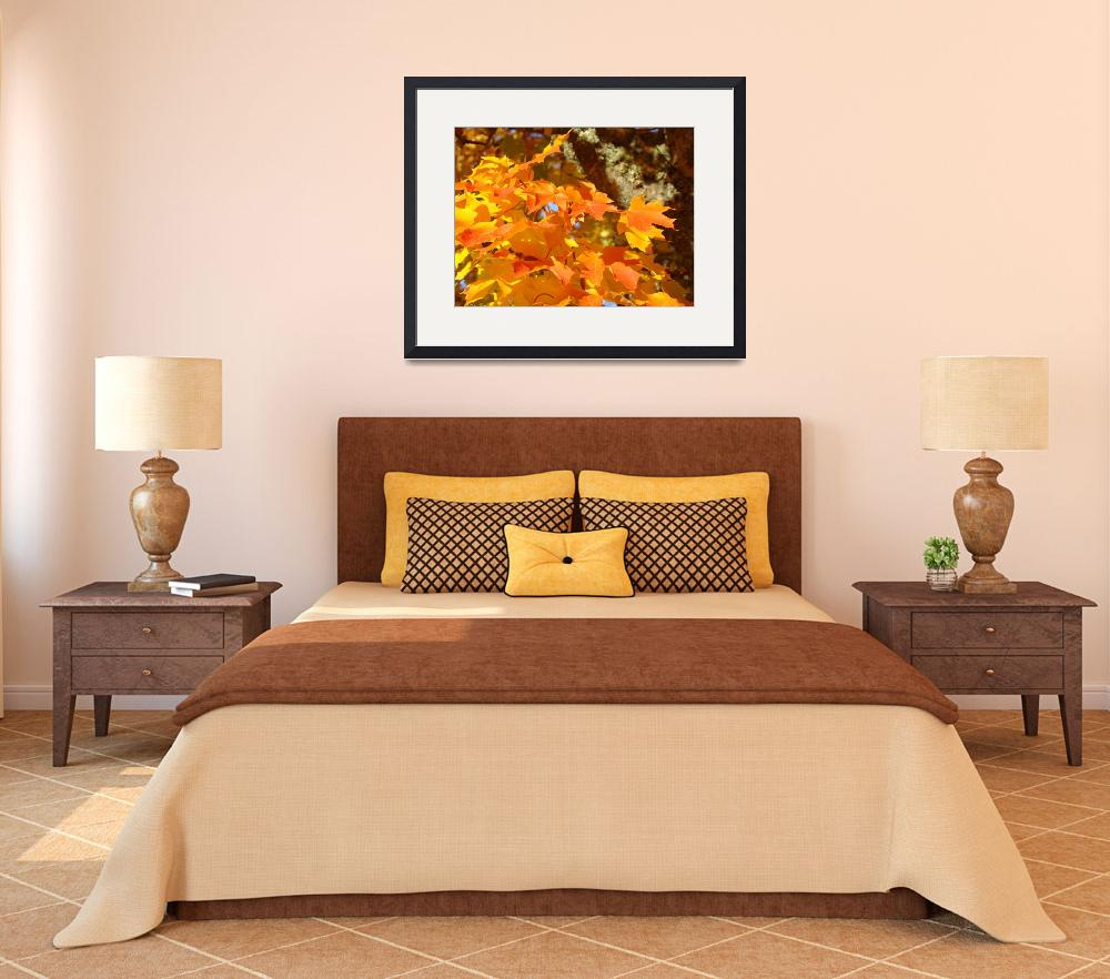 """""""Orange Autumn Leaves Fall Trees art prints nature&quot  (2013) by BasleeTroutman"""