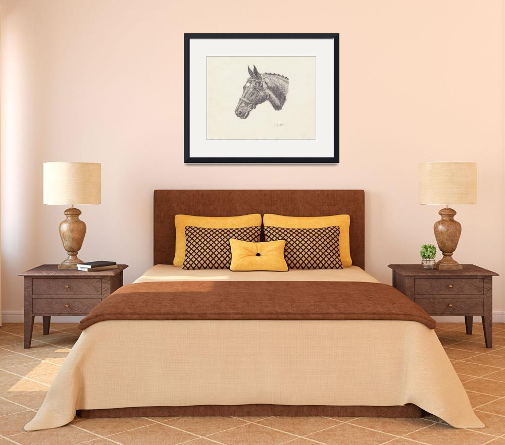 """""""Horse Drawing&quot  by CaraJ"""