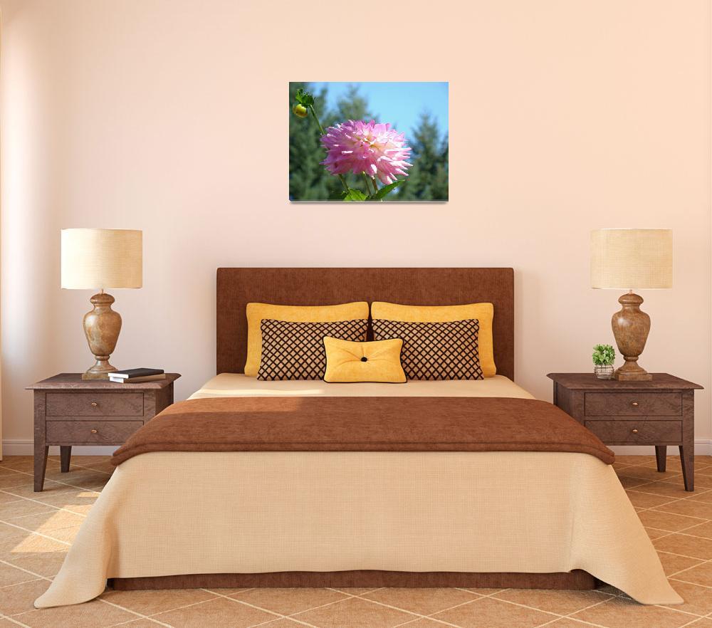 """""""Summer Botanical Garden art prints Dahlia Flower&quot  (2011) by BasleeTroutman"""