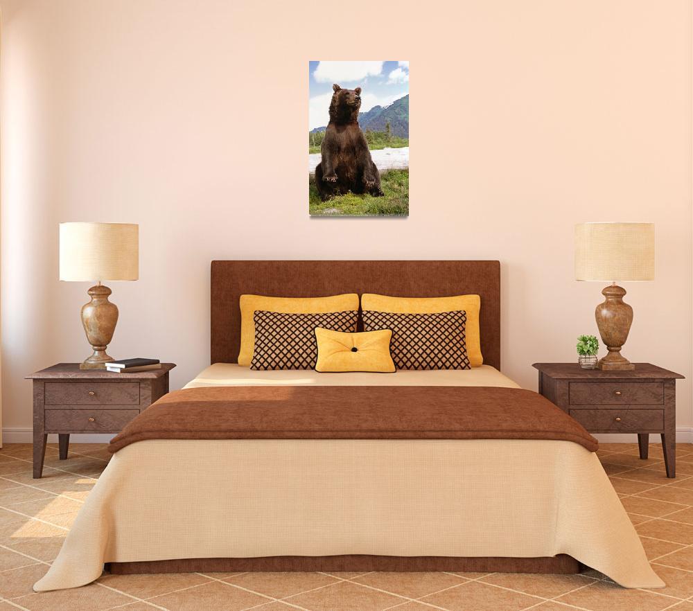 """Brown Bear sits on its rump at the Alaska Wildlife&quot  by DesignPics"