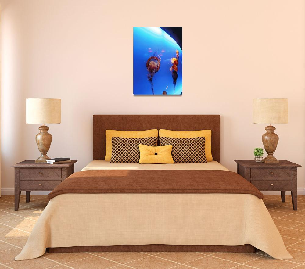 """""""Jelly Fish&quot  (2012) by cneartgallery"""