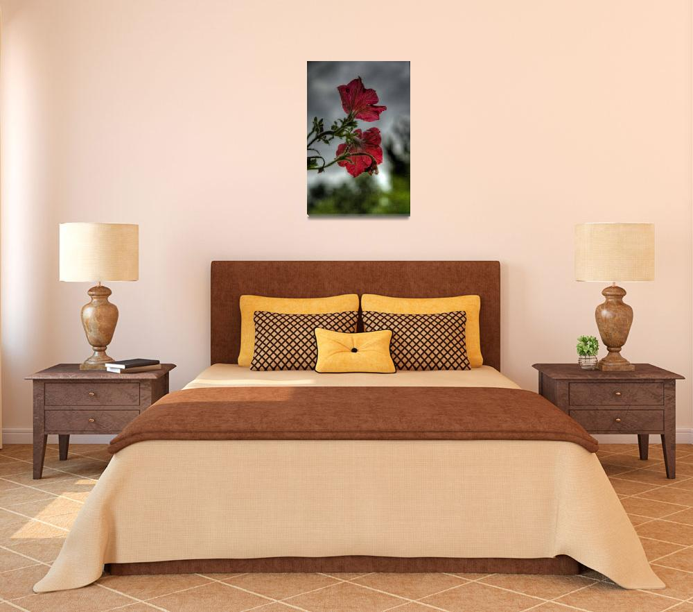 """""""HDR Flowers 2&quot  (2009) by inabeanpod"""