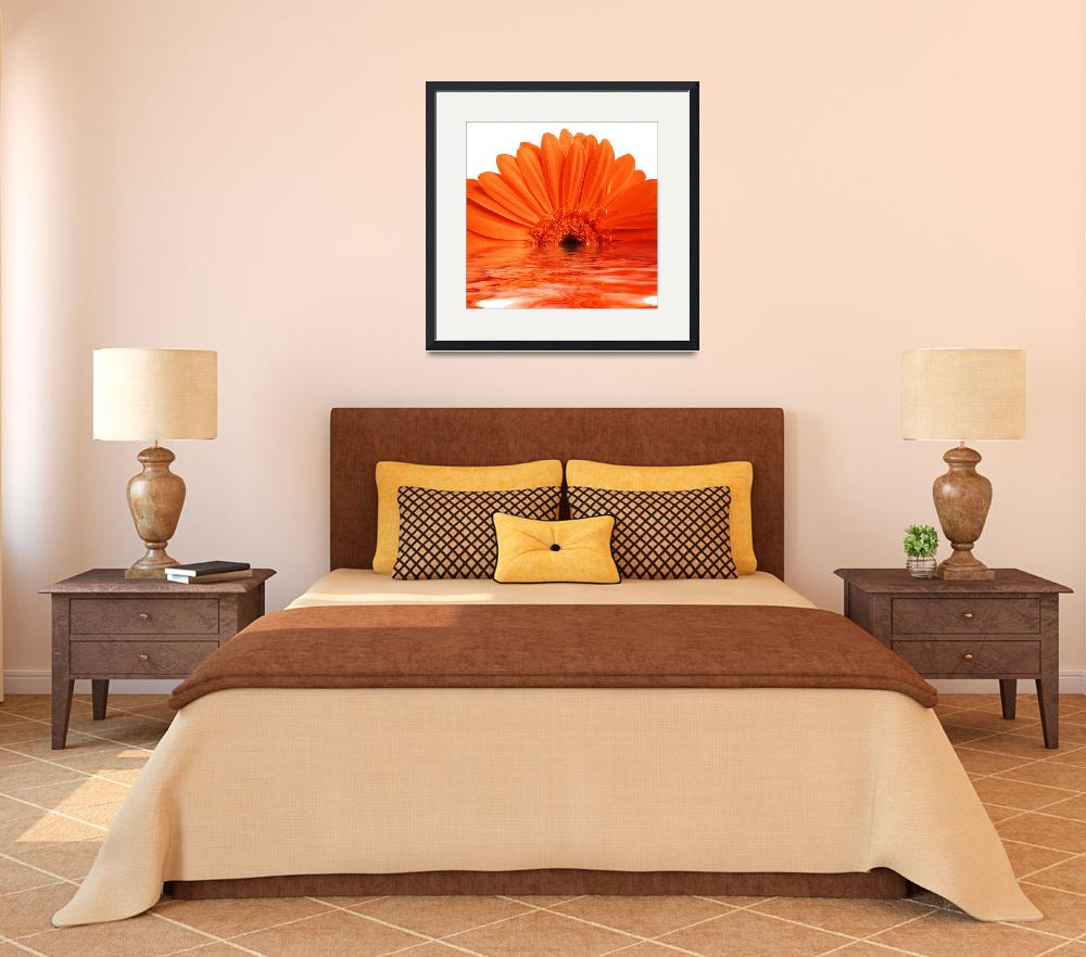 """""""red gerbera&quot  (2008) by Dessie"""
