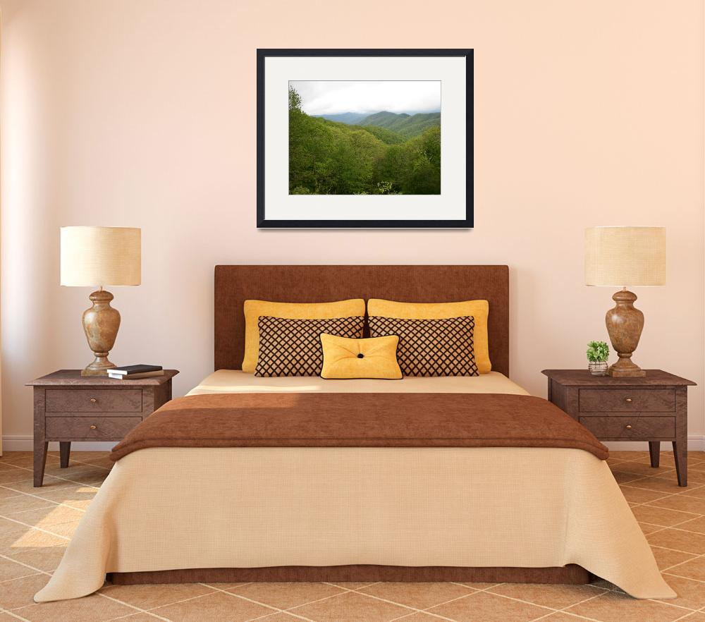 """""""Blue Ridge Mountains in Spring, NC&quot  by happysights"""