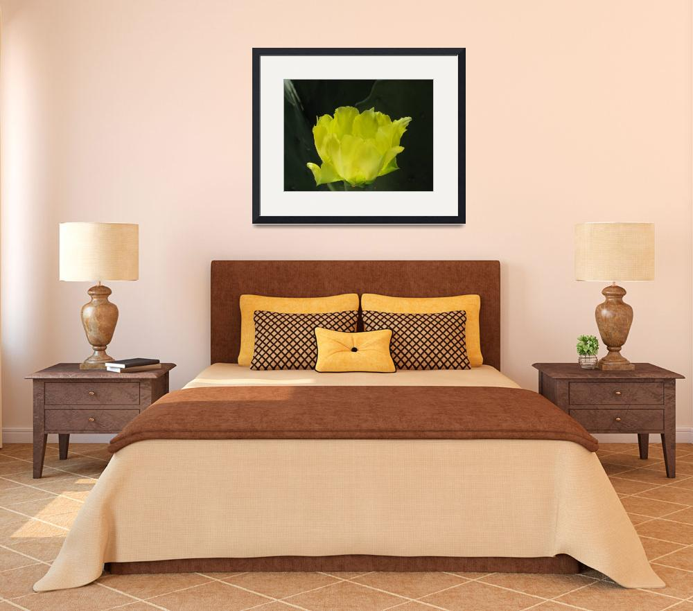 """""""beautiul yellow flower""""  by 2findpeace"""
