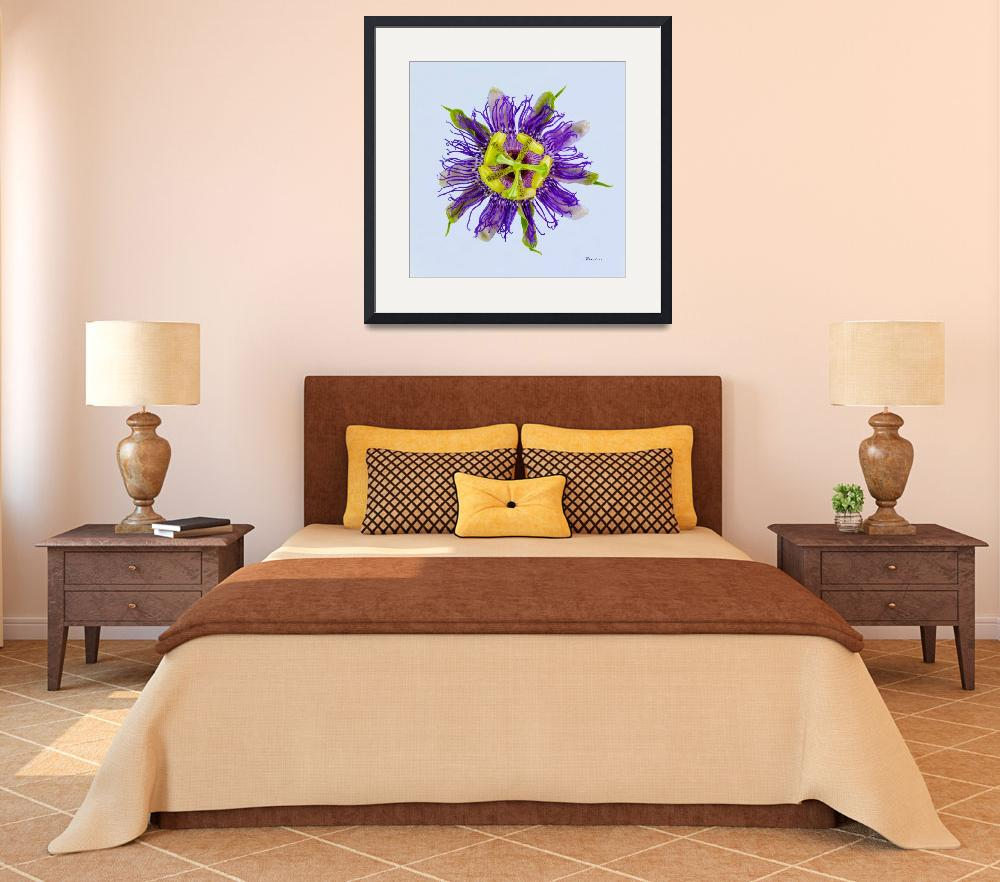 """""""Yellow Green and Violet Passion Flower 50674b&quot  (2018) by Ricardos"""