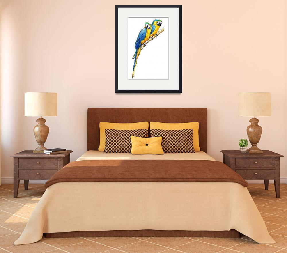"""""""Blue and Yellow Macaws&quot  by inkart"""