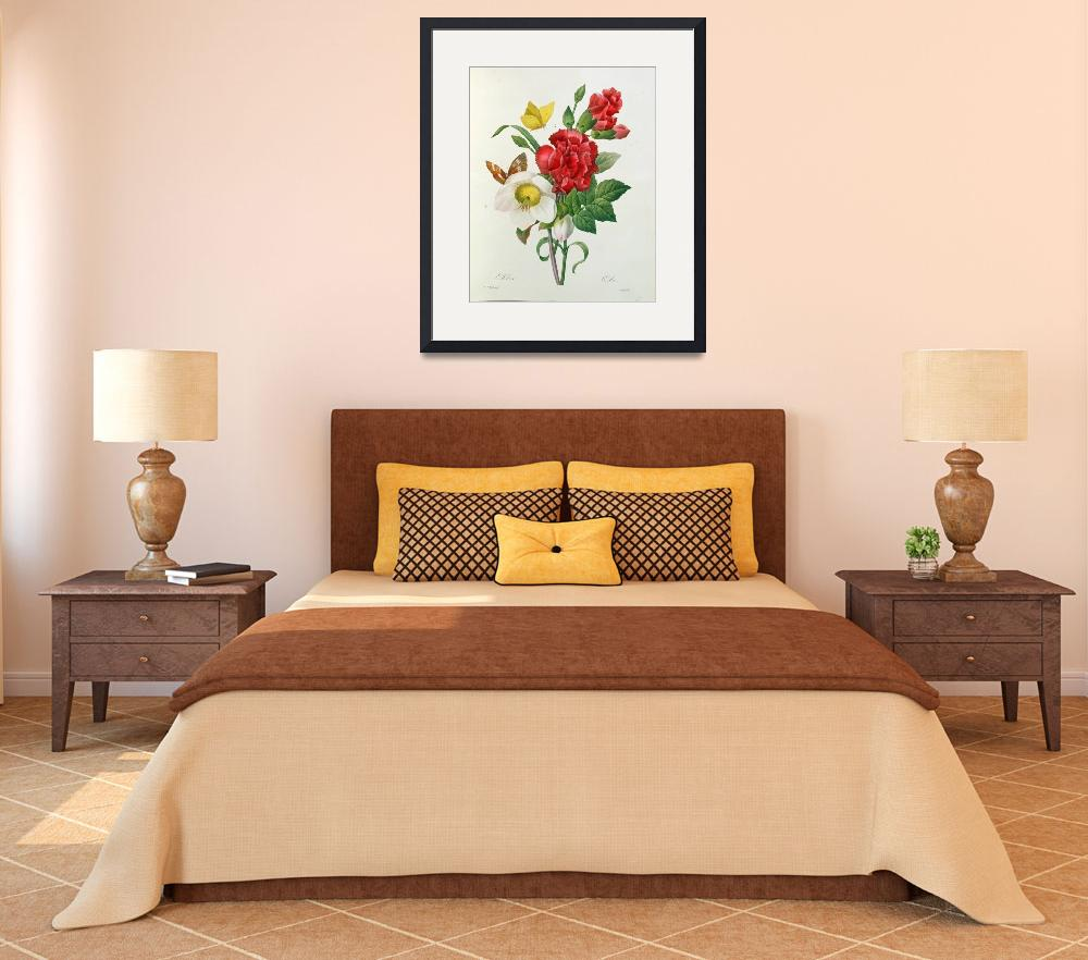 """""""Christmas Rose, Helleborus niger and Red Carnation&quot  by fineartmasters"""