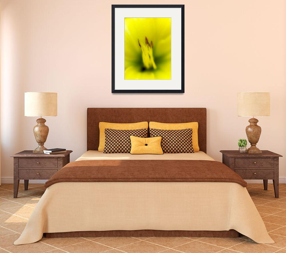 """""""Yellow Lily""""  (2012) by Chileman"""